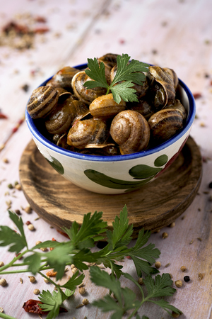 a ceramic bowl with spanish caracoles en salsa, cooked snails in sauce, on a rustic wooden table Stock Photo
