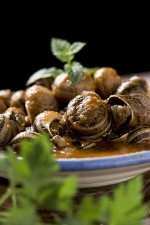 closeup of a ceramic bowl with spanish caracoles en salsa, cooked snails in sauce, on a rustic wooden table Stock Photo