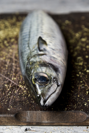 closeup of a raw fresh mackerel on a dark wooden chopping board placed on a rustic wooden table