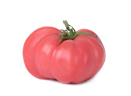closeup of a pink beef tomato on a white background