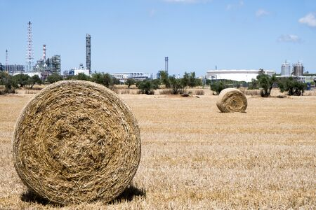 a view of a crop field in Spain, with some large round straw bales after harvesting, next to the facilities of an industry