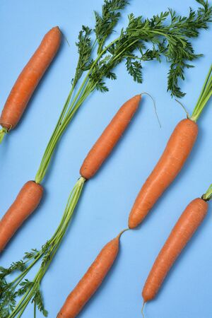 high angle view of some carrots placed in diagonal on a blue background