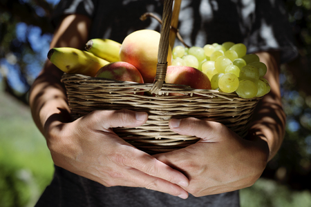 closeup of a young caucasian man with a rustic basket full of fruit freshly collected in an organic orchard