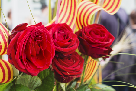 closeup of some red roses on sale in a street stall in Barcelona, for Saint George Day, celebrated every April 23, when it is tradition to give roses and books in Catalonia