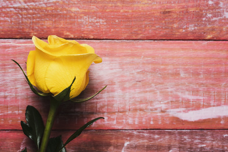 closeup of a yellow rose on a red rustic wooden surface with some blank space on the right