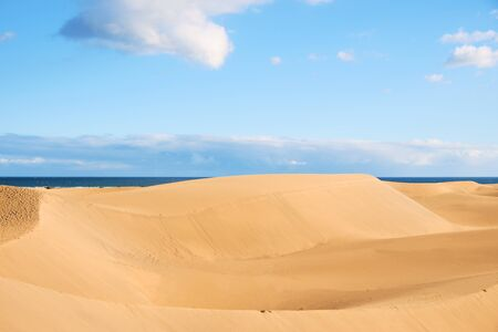 a panoramic view of the sand dunes of Maspalomas, in the Canary Islands, Spain, with the Atlantic ocean in the background Stok Fotoğraf