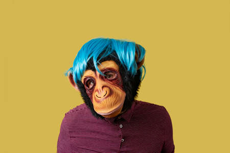portrait of a man wearing a monkey mask and a blue wig, on a yellow background with some blank space around him Banque d'images