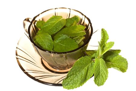 Green tea with mint on white background Stock Photo - 4928514