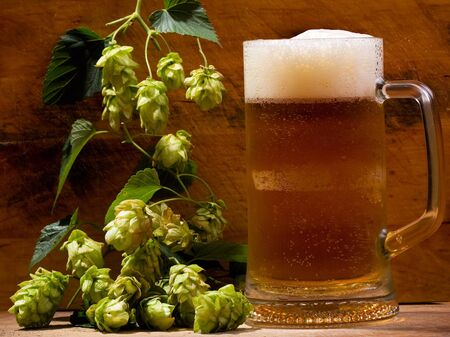 still life with mug of beer and hops photo