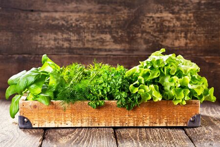 wooden box: fresh green herbs in wooden box Stock Photo