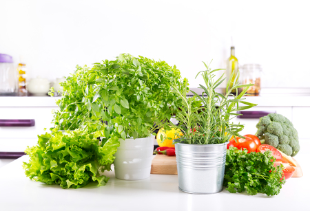 green herbs: fresh green herbs and vegetables in the kitchen