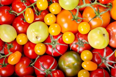tomate: divers tomates comme toile de fond