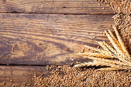 cebada: espigas de trigo y granos en una mesa de madera Foto de archivo