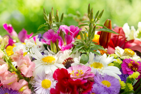 flower background: bouquet of summer flowers on green background