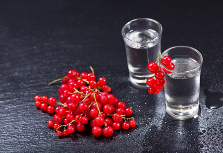 red currant: cold glasses of vodka with red currant on dark background