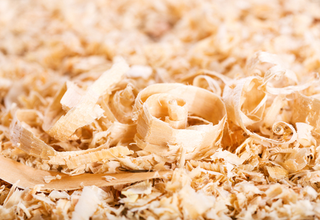 carpenter's sawdust: wood sawdust as abstract background Stock Photo