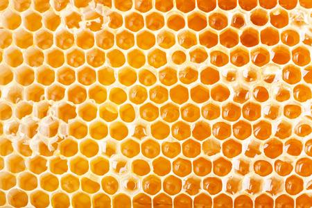 Sluit omhoog mening van honingraat als achtergrond Stockfoto