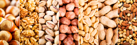hazelnuts: collage of mixed nuts as background