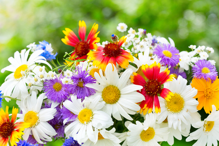 red white and blue: close up of bouquet of various summer flowers on green background