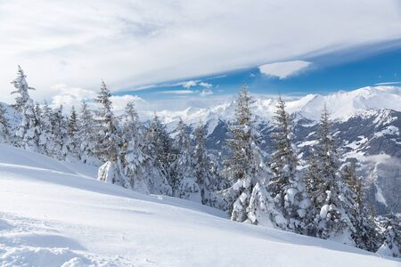 Winter landscape with snow trees and winter mountains, alps mountains