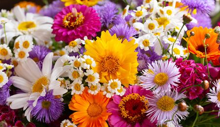 close up of bouquet of various summer flowers as background