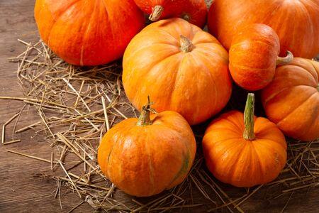 Orange pumpkins on wooden table. Autumn harvest background Reklamní fotografie