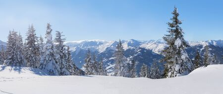 Panorama of winter landscape with snow trees and winter mountains, alps mountains, Austria Reklamní fotografie