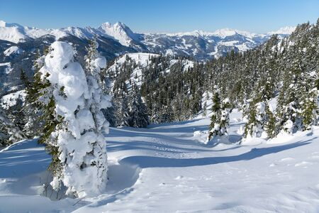 Winter landscape with snow trees and winter mountains, alps mountains, Austria Reklamní fotografie