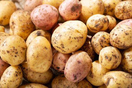fresh potatoes as background