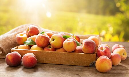fresh ripe peaches with leaves in a box on a wooden table