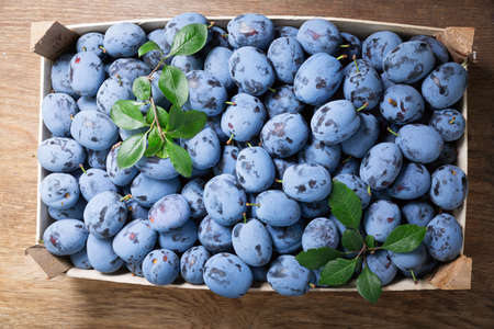 fresh ripe plums in a wooden box, top view