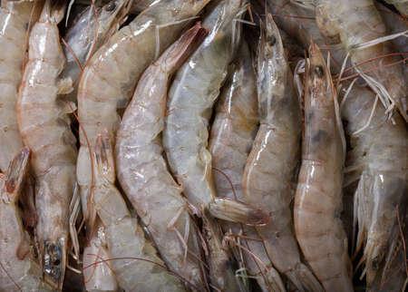 fresh shrimps as background, top view 版權商用圖片