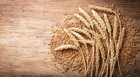 wheat ears and grains on a wooden background, top view