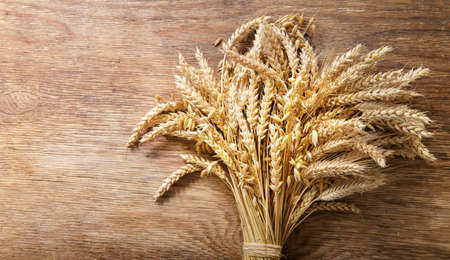 Bunch of ripe cereal. Mix of wheat ears, rye, barley and oat on a wooden background, top view