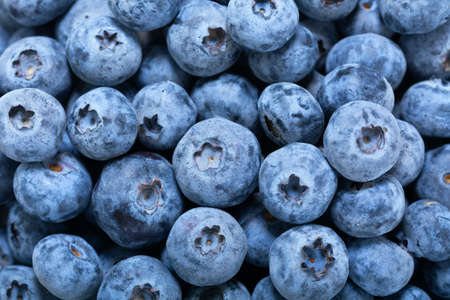 fresh blueberry as background, top view