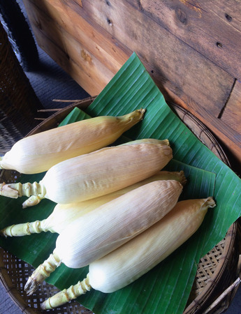 bottoms: The Corn on banana leaf ,and contains interlocking trays with perforated bottoms. Stock Photo