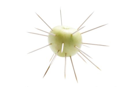 The isolated apple covered with thorns
