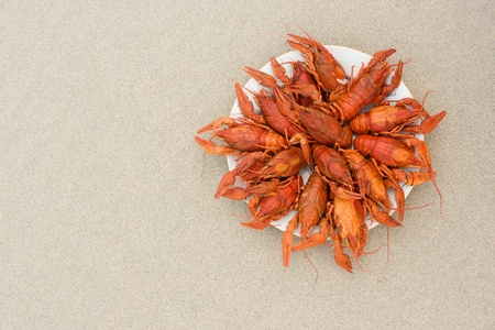 Crayfish on sand, ready to eat in a dish on the shore