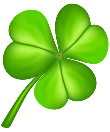 three leaf clover: Three leaf clover isolated on white. Vector illustration