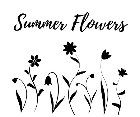 Summer flowers in black and white, illustration isolated on white