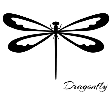 Black and white dragonfly silhouette. Vector backgrounds, prints, textile decoration