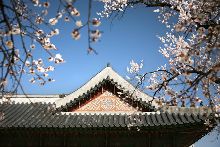 rood: The one building know as Jagyeongjeon of the emperor palace at seoul