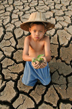 Children plant the tree on cracked earth, Climate change concept
