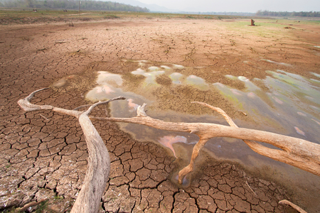 Temperature rise impact to water in the lake dry, World Climate change and global warming effect Stock Photo - 56341335