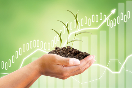 Hand holding Sprout tree with growing graph of financial or Market share or sale Income diagram on beautiful green abstract background.