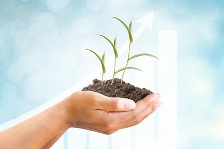 diagrama de arbol: Mano con el árbol y el gráfico cada vez mayor en el hermoso fondo abstracto azul, finanzas, inversión, rentas, intereses, banca de negocios y conceptos.