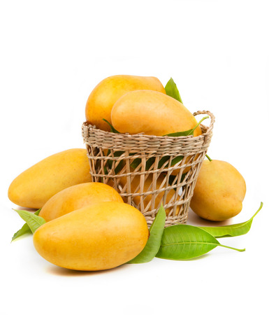 Fresh mango and leaves in basket isolated white background 스톡 콘텐츠