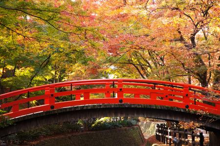 Red wooden bridge Kyoto Autumn Japan