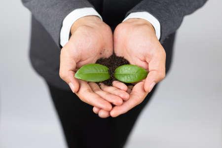 토양에서 성장하는 식물을 들고하는 사업가를 닫습니다.