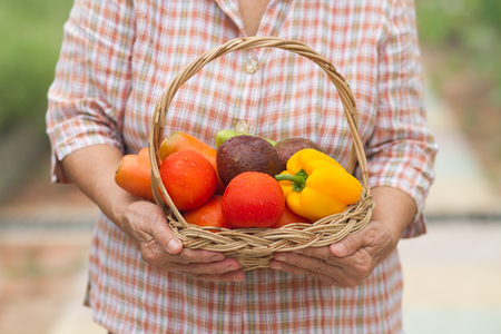 Retired senior woman holding fresh vegetable and fruit in basket that harvest from her gardening. She grow vegetable and fruit as her hobby and cook them for family's health Stockfoto